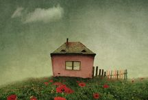 Tiny houses / by Susan O'Halloran