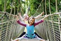 Enjoy your stay with best natural accommodation / The idea of a tree house may differ for every one of us.