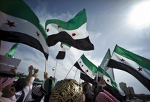 Syria freedom / The tyrant fights freedom
