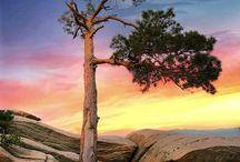 Fotos e paisagens / Fotos e imagens bonitas, inspiradoras!