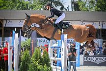 Equine Sport Photography