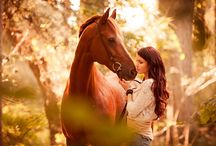 horse fotoshooting