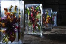 jég & virág