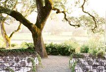 Wedding California / by Kristin Kraemer