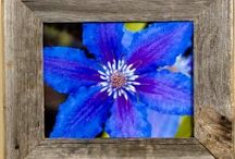 Barnwood Frames ONLY / This board is to showcase only Barnwood Picture Frames. Feel free to invite other people to collaborate on this board. To be invited to the board, simply comment on one of my pins and I'll add you However, spammers will be removed and their pins will be deleted. Thanks!