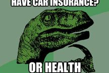 Insurance Information And Humor