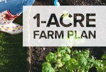 Small Scale Farming (Homesteading)