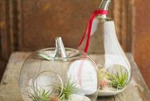 Products I Love / by Kimberly Doyle