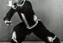 Hung-gar  kung-fu