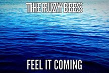 Titles, Lyrics and Quotes / The Fuzzy Bees song related pins