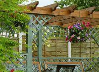 Zahrada a renovace / Výsadba zahrady