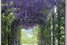 Purple / by Margie Bauer