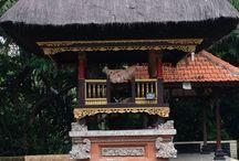 Bali tour / Tour of Bali Indonesia   https://womentravelingtheworld.com/tour/bali-a-journey-of-discovery/