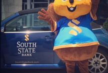 Meet Stash / Meet South State Bank's mascot, Stash! He represents our Squirrels Club and attends events throughout our communities.