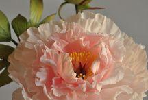Gum paste & sugar flowers.