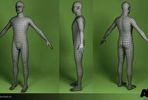 wire mesh n anatomy