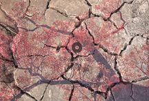 Modern Nature / Nature again got colored.