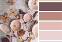 Color Palette /  Inspiration of colors