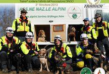 Cani da soccorso - Rescue dogs / Cani speciali che salvano vite umane. Special dogs that save lives.