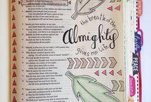 biblia jornal