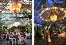 party/wedding ideas.  / by ReAnna DuBois