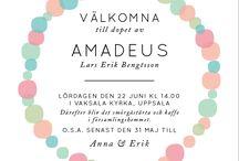 Amelias dop