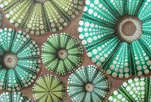 Inspirations : Oursins et fleurs