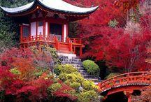paesaggi Giapponesi