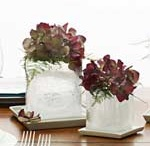 Party Decorating / by Kim Joiner