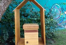 Caixa abelhas