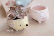 Ceramic idea