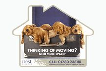 Cute & cuddly estate agents leaflets / They are not most clever,  creative, or sophisticated estate agents leaflets but they are quite popular. As a nation of animal lovers these leaflets are resistant to recycling!