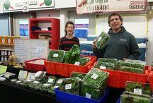 South Bend Farmers Market / Local Farmers Market