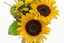 Sunflower arrangements / by Becky Conner