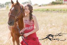 Horses etc