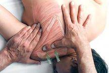 Anatomik masaj