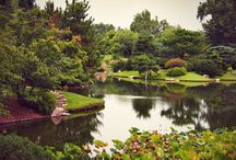 Taking a Lap Garden Tour / Exploring gardens as we travel around the world