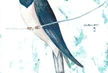 petit oiseau / by Ellen WC