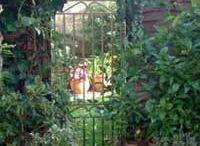 Mirror tricks in the garden / Mirrors creating extra space in the garden
