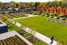 Landscape TREE Architecture / The art and craft of tree planting
