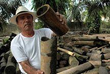 Guadua-Bamboo Ideas
