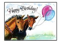 horse birthdays