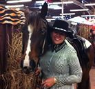 Sound and Natural Gaited Horses of FOSH / Beautiful gaited horses and FOSH information