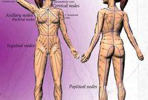 body secret spots