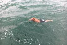 PR CAMPAIGN   Chris Shapland Channel Swim