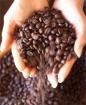 Coffee ~ ~ / by Sherry Capozzi