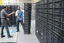 CBL-depots Nederland / Bij de CBL-depots is o.a. het CBL-fust verkrijgbaar. tevens inslag, opslag, sortering, telling, reiniging, verhuur, registratie & beheeractiviteiten vinden plaats op deze depots. zie voor meer info:  www.HB-cRc.com