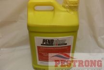 Herbicide (Weed Prevent / Weed killer) / Herbicide and weed killer treatment from pestrong diy pest supply / by DIY Pest Weed Control Pestrong