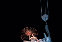 circus arts/movement / by Jamie Wilson