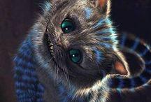 cheaschier cat